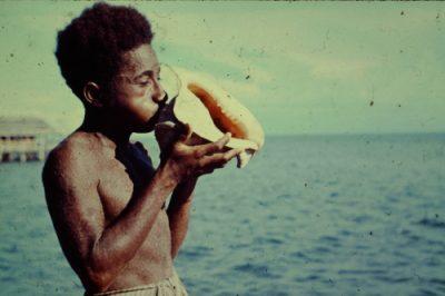 artikelen over papua