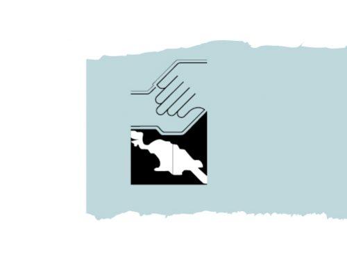 Hapin,  ProPapua en Papua Solidariteit slaan de handen ineen