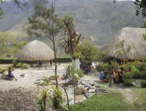 Bliksembezoek Papua